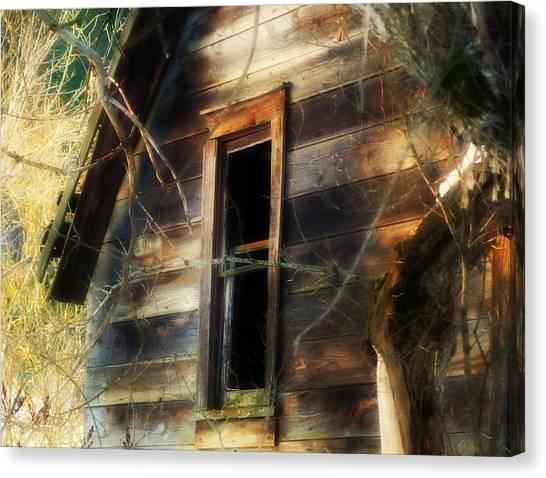 The Window2 Canvas Print