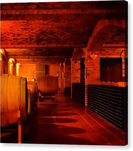 Wine Barrels Canvas Print - The Wine Cellar by David Lopez