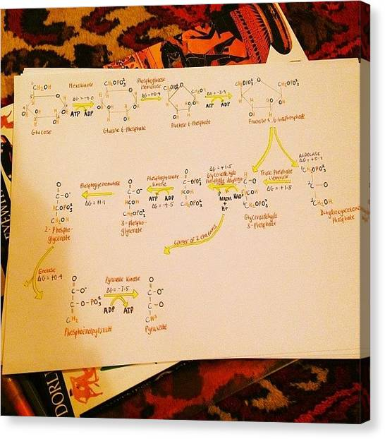 Biochemistry Canvas Print - The Worst Subject I Have Ever Studied by Erin Holloway