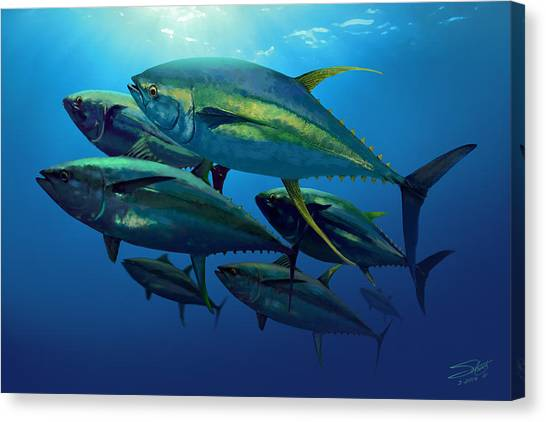 Yellowfin Canvas Print