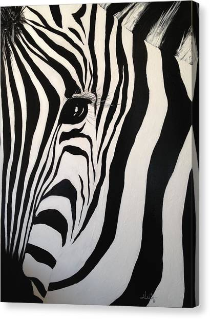 The Zebra With One Eye Canvas Print