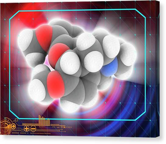 Thebaine Drug Molecule Canvas Print by Laguna Design/science Photo Library