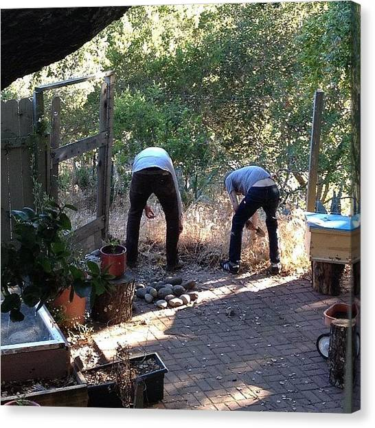 Hops Canvas Print - #theboys #working In The #garden by Emily Sheridan