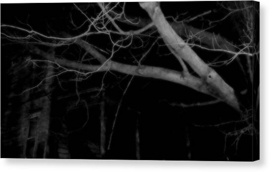 Midnite Canvas Print - There In The Silence by Mike Greco