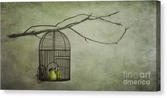 Free Canvas Print - There Is A World Outside by Priska Wettstein