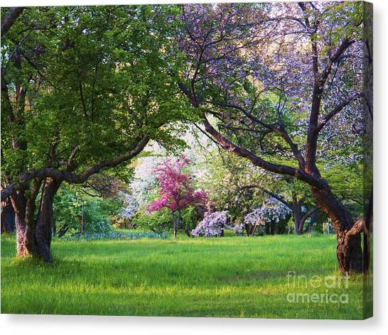 There Is No Place Like Spring Canvas Print