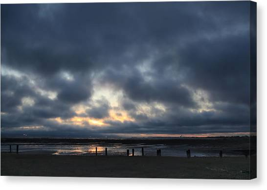 Wetlands Canvas Print - There's A Freedom In The Night by Laurie Search