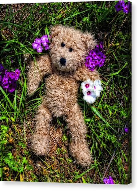 Teddy Bears Canvas Print - These Are For You - Cute Teddy Bear Art By William Patrick And Sharon Cummings by Sharon Cummings