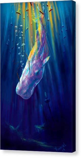 Blue Whales Canvas Print - Thew White Whale by Yusniel Santos