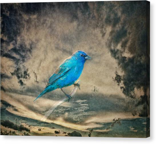They Call Me Blue Canvas Print