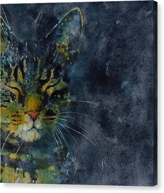 Kittens Canvas Print - Thinking Of You by Paul Lovering