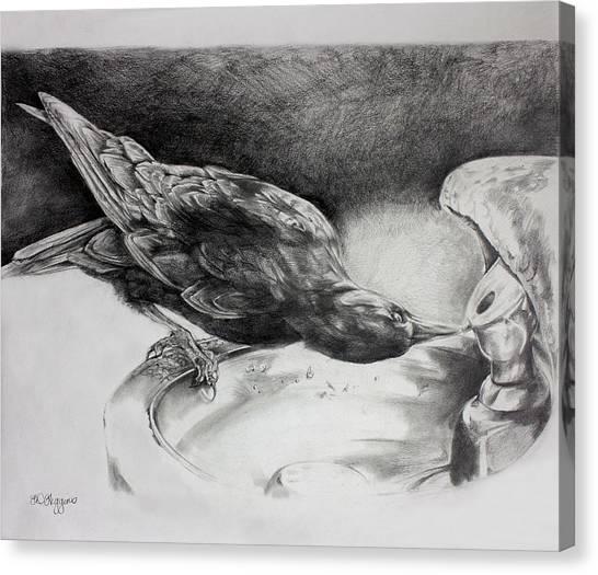 Raven Canvas Print - Thirsty Crow by Derrick Higgins