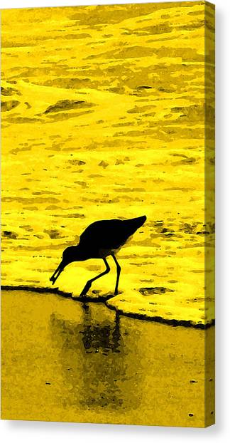 Sandpipers Canvas Print - This Beach Belongs To Me by Ian  MacDonald