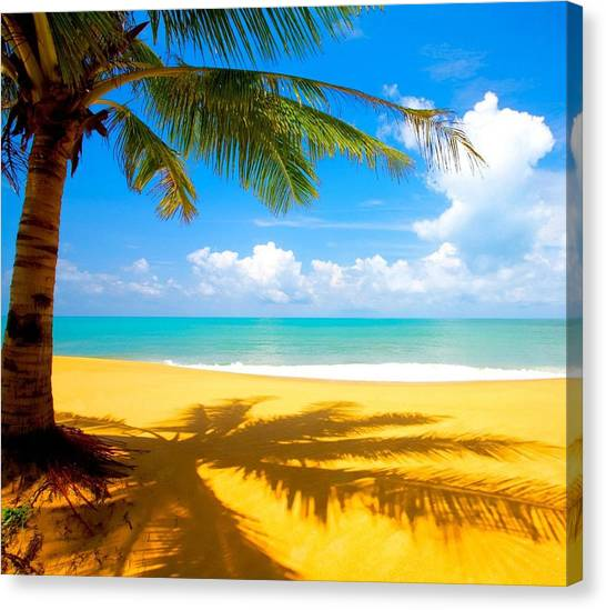 This Is About Living Life Canvas Print