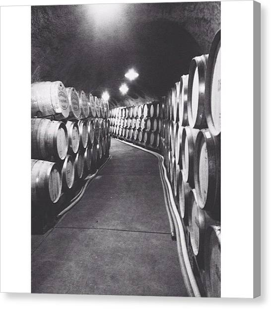 Wine Barrels Canvas Print - This Is Where The Magic by Jackie W