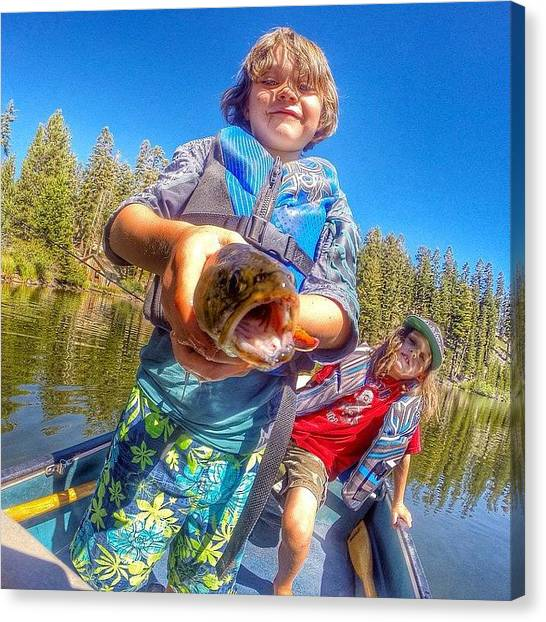 Trout Canvas Print - This Kids Has Been On Fire Lately by Tim  Rantz