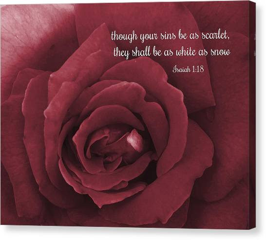 Though Your Sins Be As Scarlet Red Rose Canvas Print