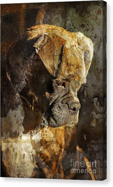 Boxer Dog Canvas Print - Thought Process by Judy Wood