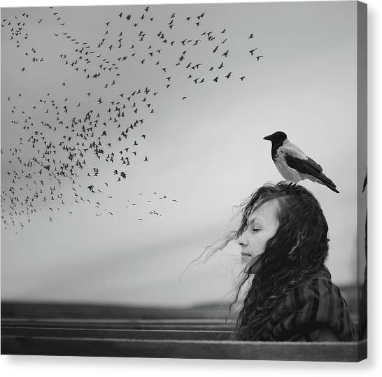 Crows Canvas Print - Thoughts by Tatiana Koshutina
