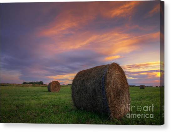 Hay Bales Canvas Print - Three Bales by Dan Jurak