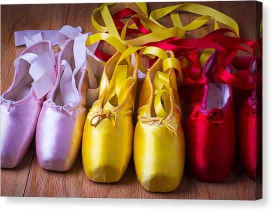 Ballet Shoes Canvas Print - Three Ballet Shoes by Garry Gay