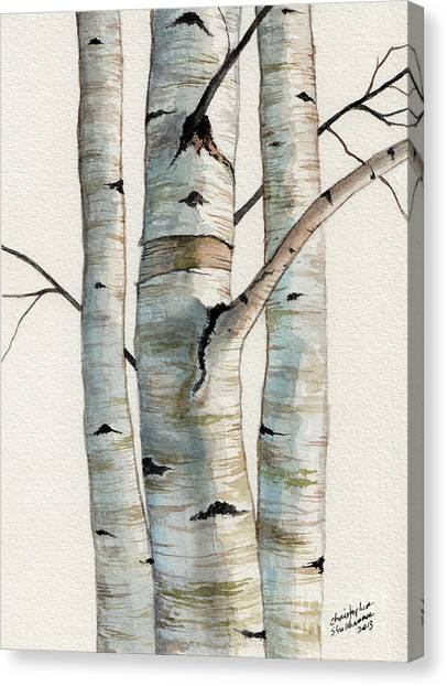 Three Birch Trees Canvas Print
