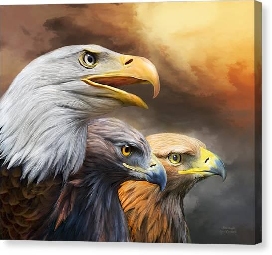 Golden Eagle Canvas Print - Three Eagles by Carol Cavalaris