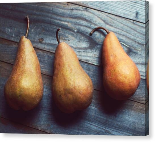 Brown Canvas Print - Three Gold Pears by Lupen  Grainne