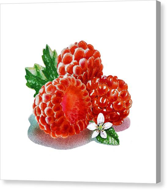 Raspberries Canvas Print - Three Happy Raspberries by Irina Sztukowski