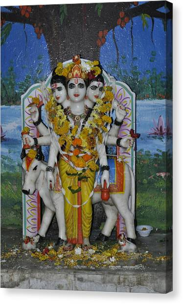Three Heads Canvas Print by Bliss Of Art