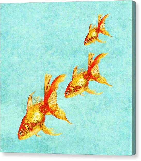Fish Canvas Print - Three Little Fishes by Jane Schnetlage