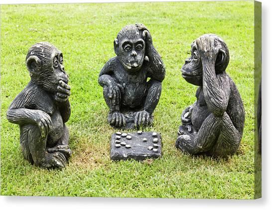 Three Monkeys Playing Checkers Canvas Print