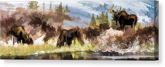 Three Moose Canvas Print