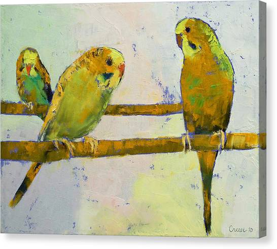 Parakeets Canvas Print - Three Parakeets by Michael Creese