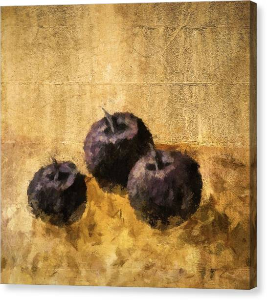 Three Plums Still Life Canvas Print