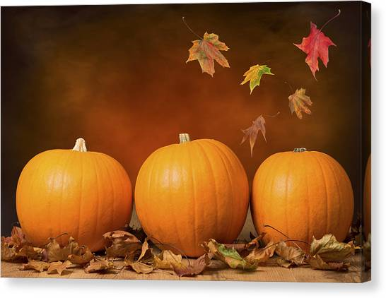 Vegetables Canvas Print - Three Pumpkins by Amanda Elwell
