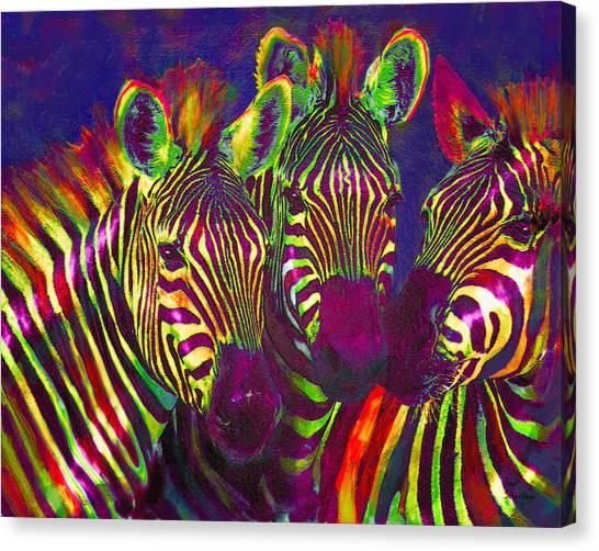 Three Rainbow Zebras Canvas Print