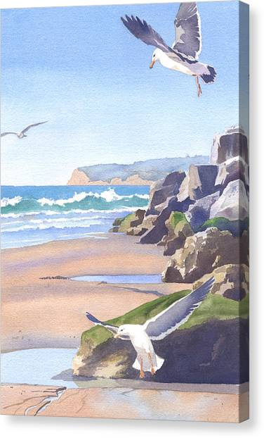 Seagulls Canvas Print - Three Seagulls At Coronado Beach by Mary Helmreich