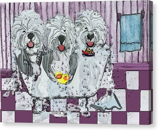 Three Sheepdogs In A Tub Canvas Print