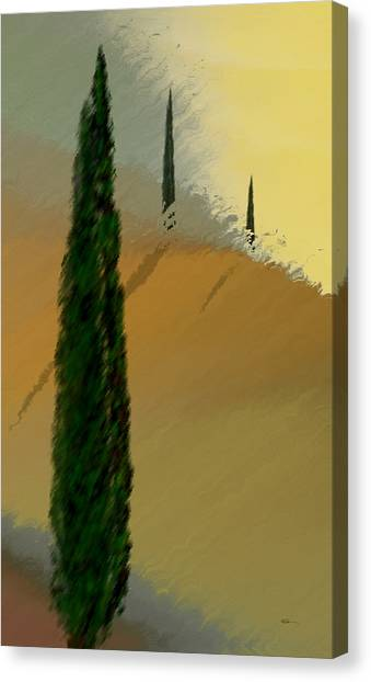 Three Tree Tuscany Canvas Print