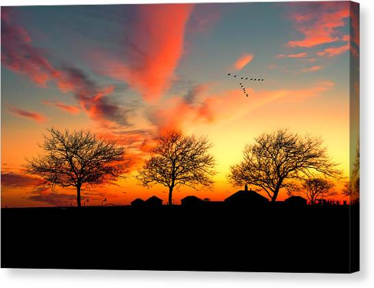 Three Trees In The Park Canvas Print