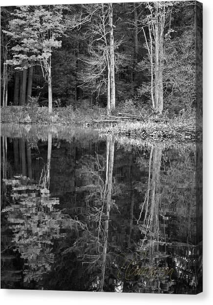 Threes Canvas Print