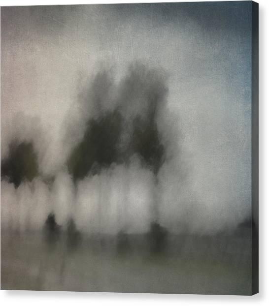 Soft Focus Canvas Print - Through A Train Window by Carol Leigh