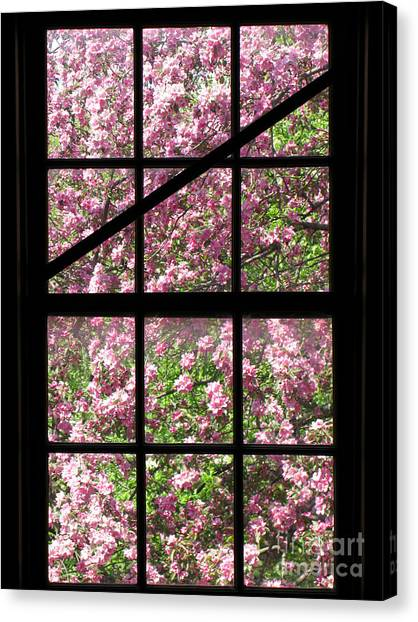 Window Canvas Print - Through An Old Window by Olivier Le Queinec