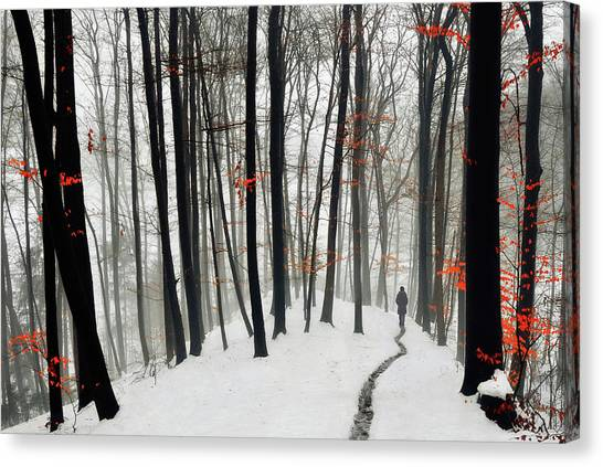 Destinations Canvas Print - Through Autumn And Winter by