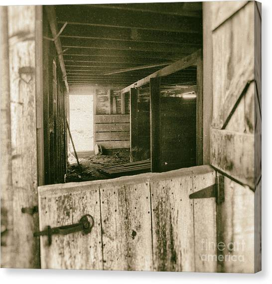 Through The Barn Door Canvas Print