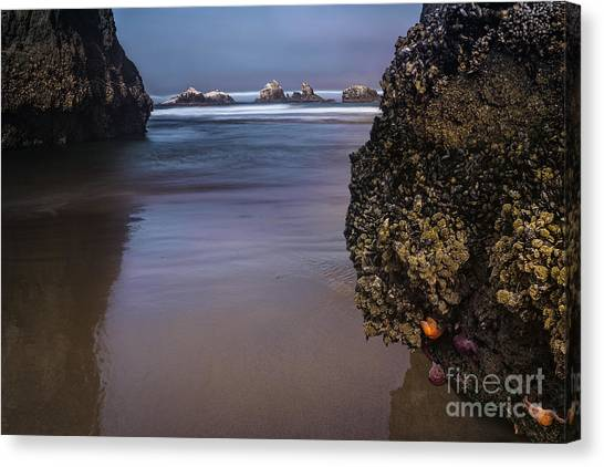 Through The Channel Canvas Print