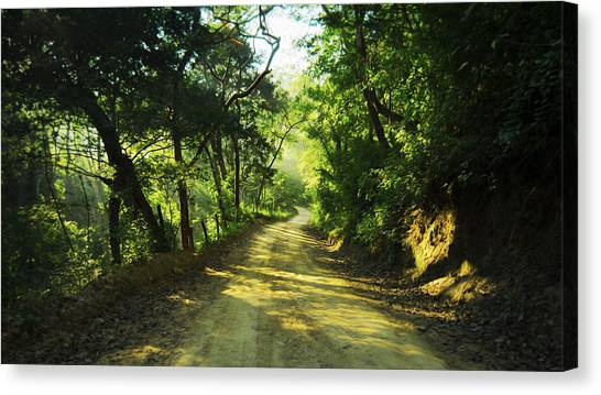 Dirt Road Canvas Print - Through The Jungle by Aged Pixel