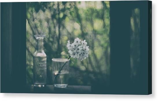 Blossom Canvas Print - Through The Open Window by Delphine Devos