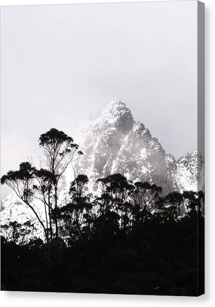 Through The Trees Come Mountains Canvas Print
